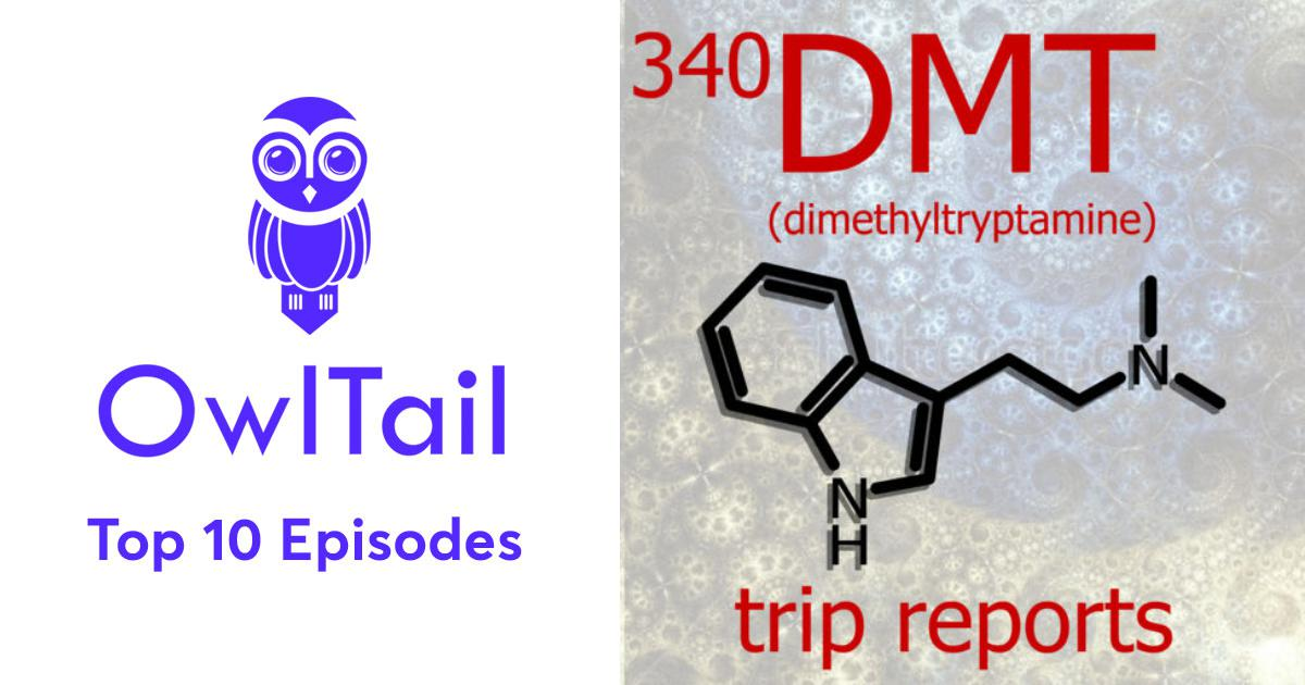 Best Episodes of 340 DMT Trip Reports